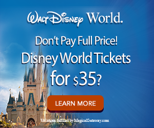 disney-300x250_3_v2-ticket
